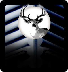 Hunting Blinds Manufacturer The Blynd Hunting Blinds